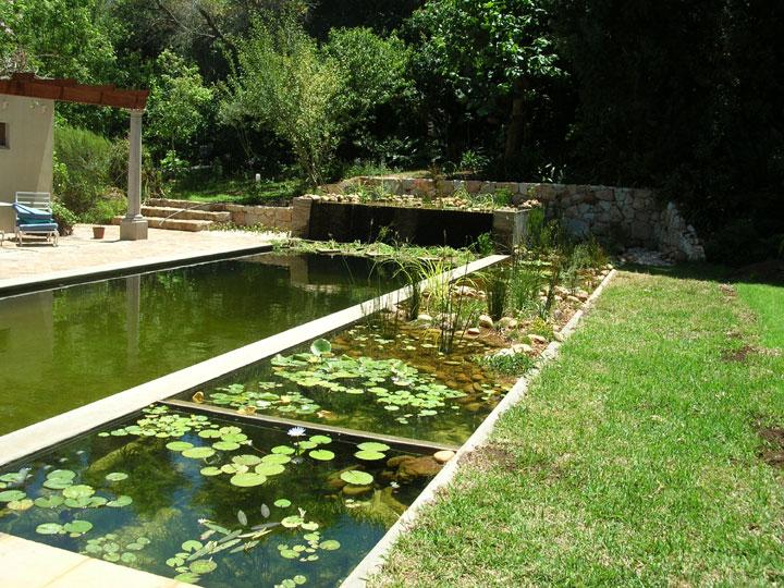 οικολογική πισίνα