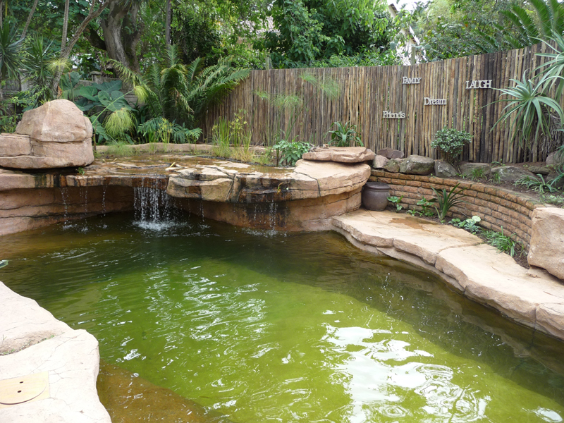 φυσική πισίνα